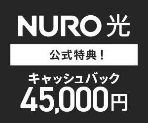 ヤマダ ネット契約 ニューロ光 ソニー