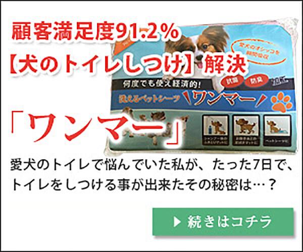 ペットシーツ+ペットタオルの【ワンマー】
