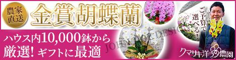 ギフト『胡蝶蘭』の専門店【ランノハナドットコム(クマサキ洋ラン農園)】