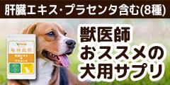 獣医師推奨サプリ「犬用・毎日良肝 肝臓エキス&プラセンタ」